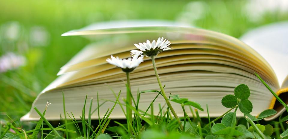 Bibliotherapie: 4 (+) boeken als medicijn tegen liefdesverdriet