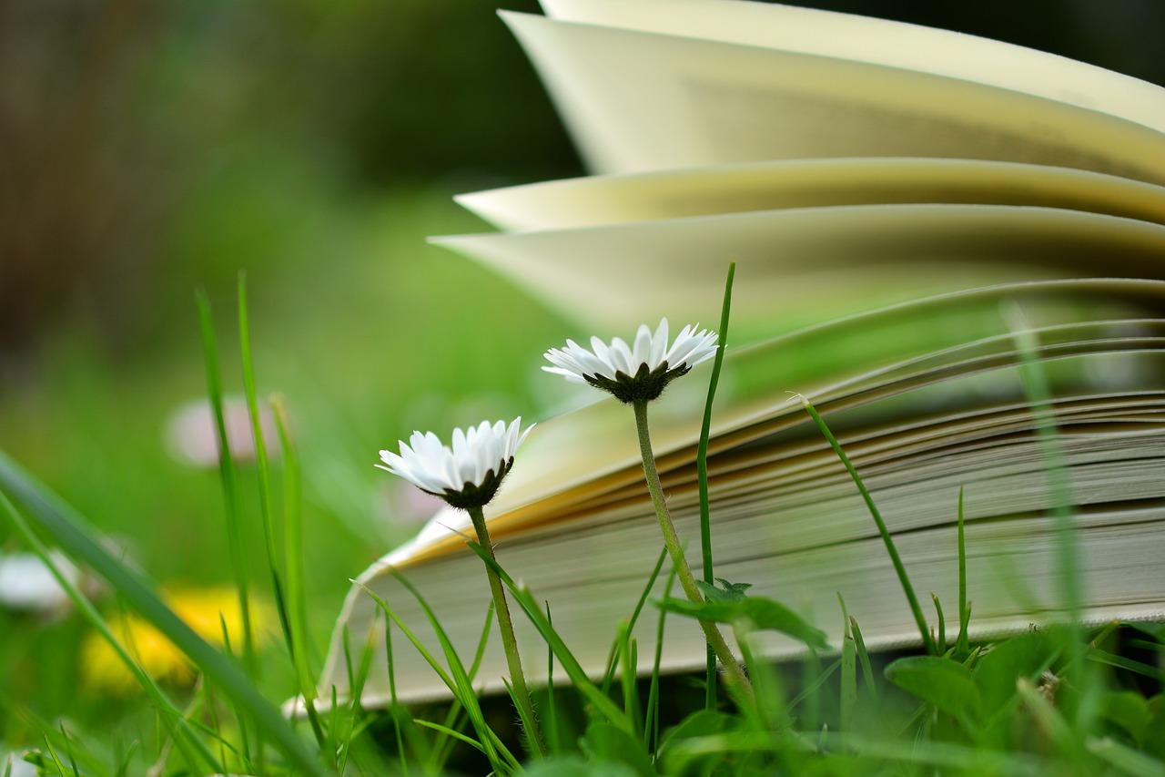 Leeslijstje: 36 boeken voor mijn Goodreads reading challenge 2018